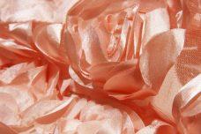 Jumbo Floral on Mesh - Blush