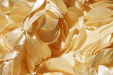 Jumbo Floral on Mesh - Butter