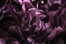Jumbo Floral on Mesh - Plum