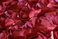 Jumbo Floral on Mesh - Burgundy