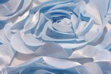 Jumbo Floral on Mesh - Light Blue