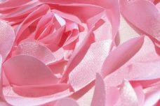 Jumbo Floral on Mesh - Light Pink