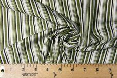 Olive Stripe Cotton Poplin